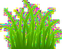 ... csak az a szép zöld gyep ...